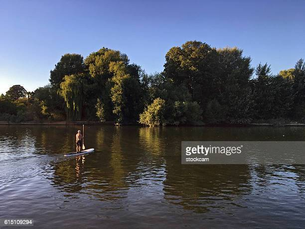 paddleboarding on river thames near richmond, uk - river thames stock pictures, royalty-free photos & images