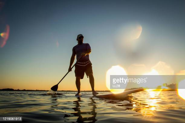 paddle-boarding with lens flare - active lifestyle stock pictures, royalty-free photos & images