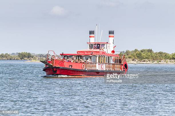 paddleboat on rhone river in camargue - france - pjphoto69 stock pictures, royalty-free photos & images