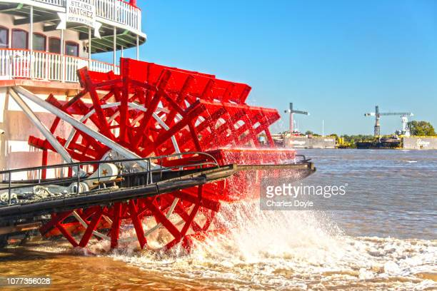 paddlewheel 3 - mississippi river stock pictures, royalty-free photos & images
