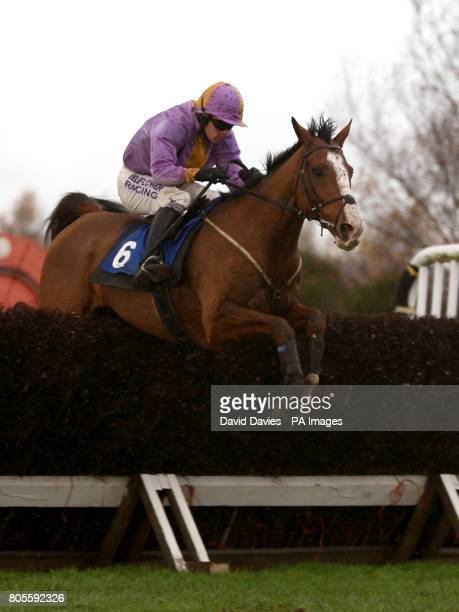 Paddleyourowncanoe ridden by Sean Quinlan during The Oldfield Beginners Steeple Chase