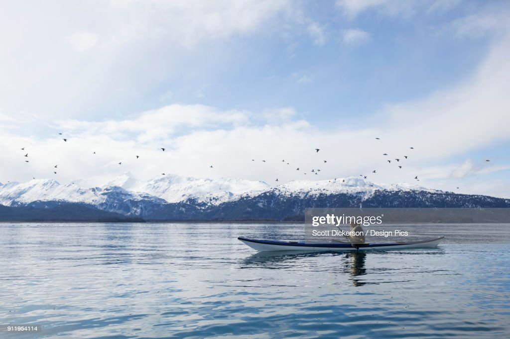 Paddling In A Canoe On Tranquil Water With A Flock Of Birds Flying Overhead And A View Of The Snow Capped Kenai Mountains, Kachemak Bay State Park : Stock Photo