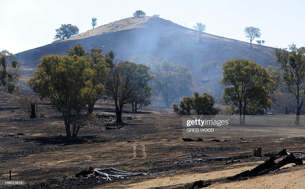 Paddocks and a hillside blackened by recent bushfires are shown near Bookham, a small village in Yass Shire west of Canberra in Australia on January 10, 2013. Fires have been raging across Australia for nearly a week and while many have been contained, 126 are still burning and at least 15 remain out of control in the country's most populous state, New South Wales. AFP PHOTO / Greg WOOD