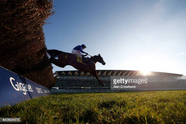 Paddy Brennan riding Cue Card clear the last to win The Betfair Ascot Steeple Chase at Ascot Racecourse on February 18 2017 in Ascot England