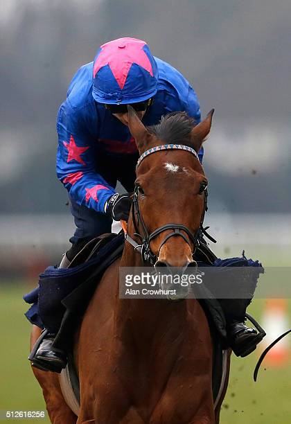 Paddy Brennan riding Cue Card in a gallop before racing at Kempton Park racecourse on February 27 2016 in Sunbury England