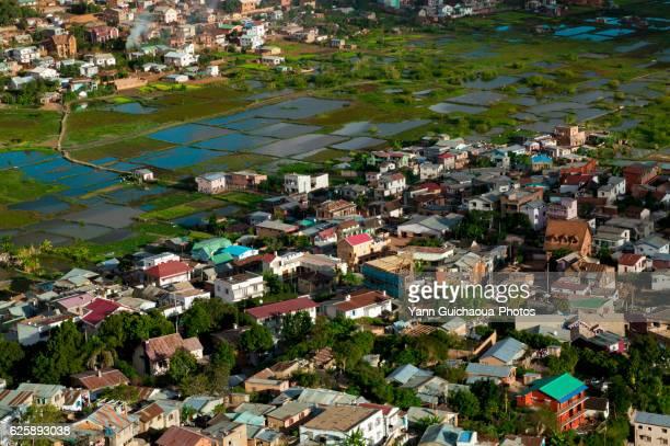 Paddy Fields, Antananarivo, Madagascar