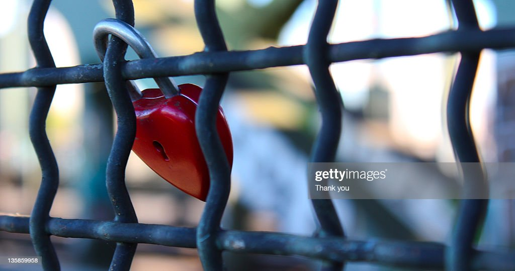 Padlock on fence : Stock Photo