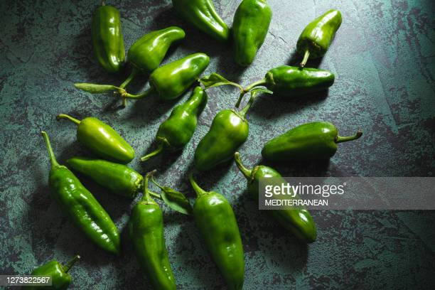 padron raw green peppers spain chili peppers - green chili pepper stock pictures, royalty-free photos & images