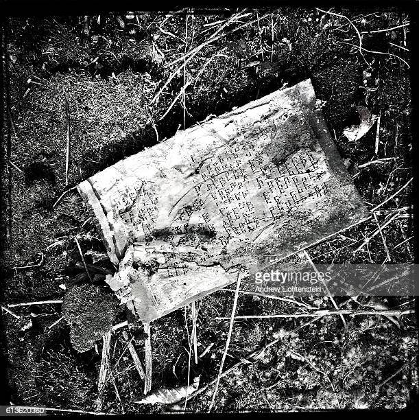 A page from an old discarded bible lies on the ground admist the wreckage of the former Paramount Hotel on March 24 2016 in Parksville New York Rural...
