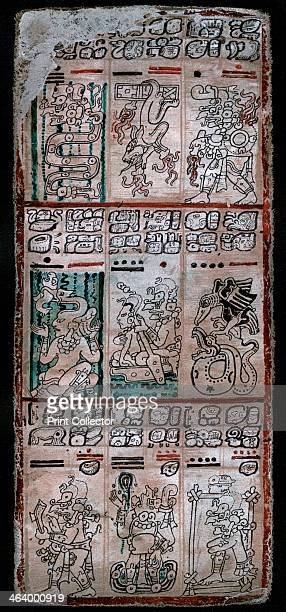 A page from the Dresden Maya Manuscript 1901 The Dresden Codex is held in the Sächsische Landesbibliothek the state library in Dresden Germany It is...