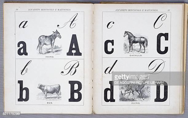 Pages of Il primo libro del bambino published by Salani. Italy, 20th century. Milan, Museo Del Giocattolo E Del Bambino Italy