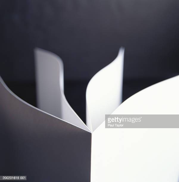 Pages of paper