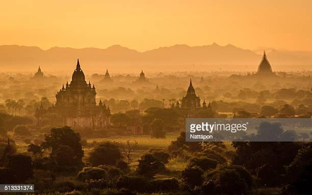Pagoda fiels at Bagan