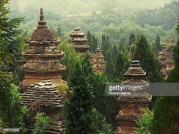 pagoda forest in henan province - henan province stock photos and pictures