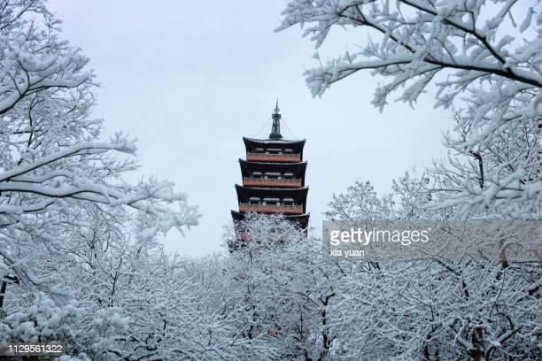 pagoda with snow covered trees,yangzhou,china - yangzhou foto e immagini stock