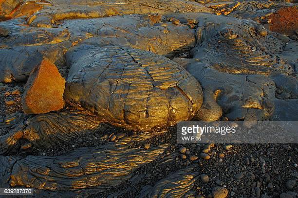 Pahoehoe Lava from Kilauea Eruption at Sunrise Kaimu Beach at Kalapana Black Sand Beach Kaimu Bay Puna District Big Island of Hawaii