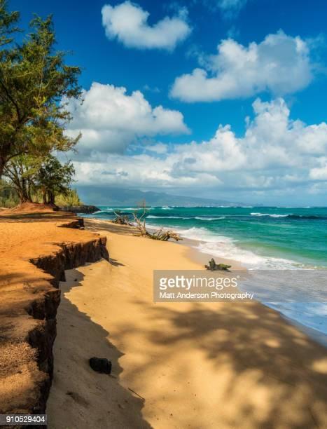 Paia Bay Beach Surf #5 Maui Hawaii Islands