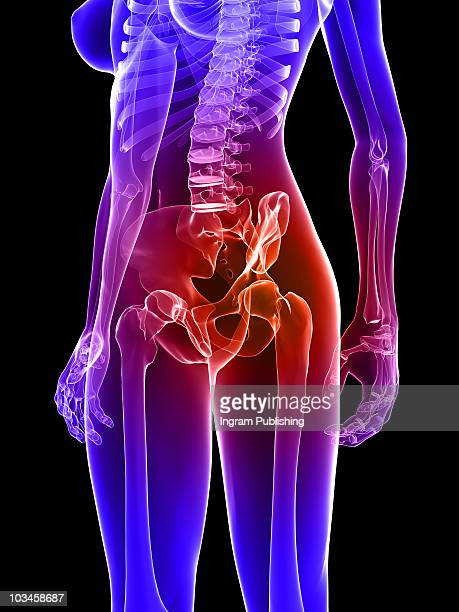 painful hip - hip body part stock pictures, royalty-free photos & images