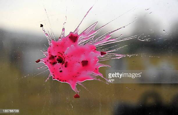 A Paint ball bullet is pictured from the bus window at the Kosovo's Paint Ball compound on December 14 2011 during the sunset near the village of...