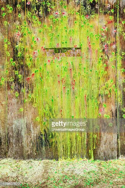 Paint covered wall and firing slit at paintball field Oregon