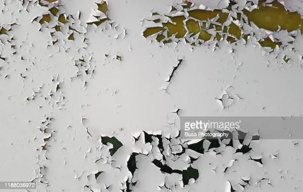 paint peeling off a ceiling in an interior setting - europe de l'ouest photos et images de collection