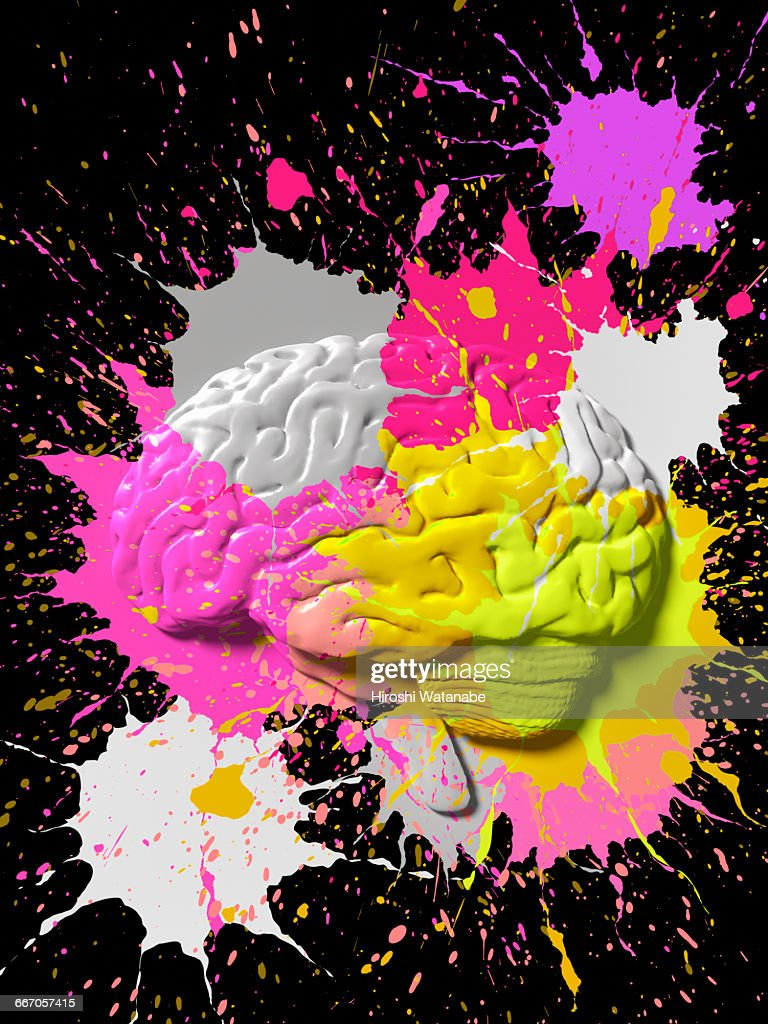 Paint splattered Brain : Stock Photo