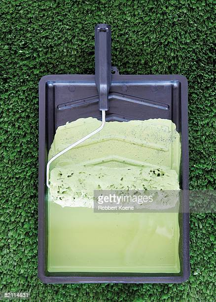 Paint tray and roller brush with pale green paint lying on green grass.
