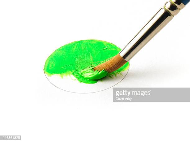 Paintbrush in green paint on white background