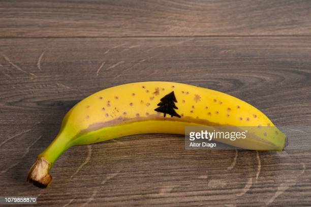painted banana a tree and snow. conceptual nature - colon cancer stock photos and pictures