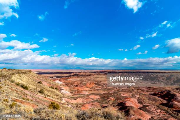 Painted Desert and petrified wood in the Petrified Forest National Park in Arizona.