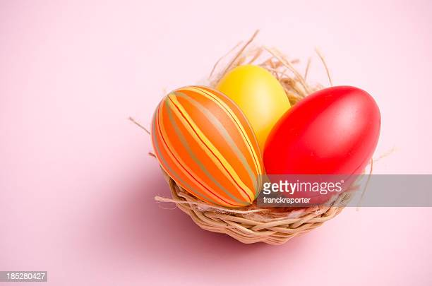painted easter egg in animal nest on colored background - easter basket stock pictures, royalty-free photos & images