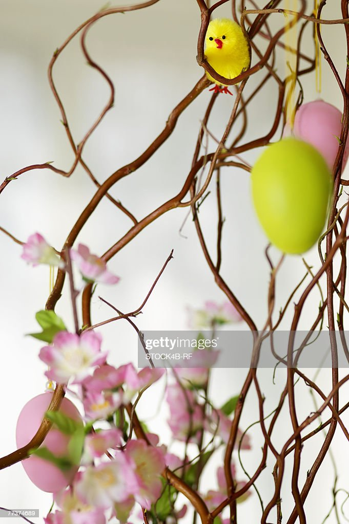 Painted Easter eggs hanging on a branch, close-up, selective focus : Photo