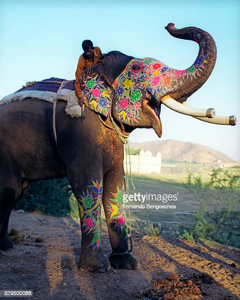 Painted Elephant Trumpeting