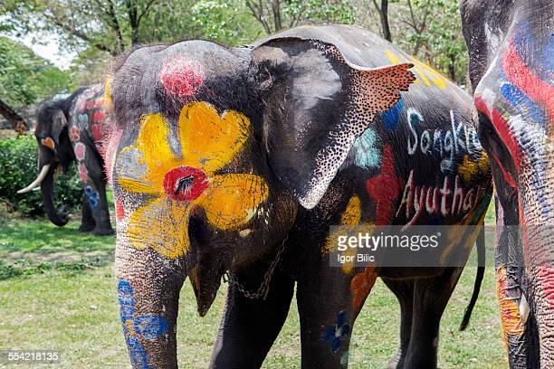 Painted elephants, Songkran, Thai New Year