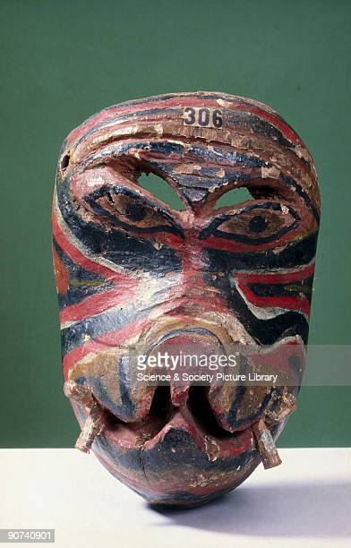 Painted face mask representing the head of an animal probably a boar possibly worn during the kolam masked playassociated with the exorcism of...