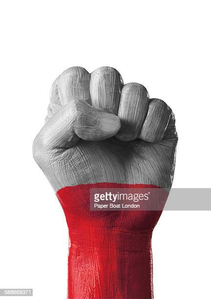 painted flag of poland on a hand in white studio