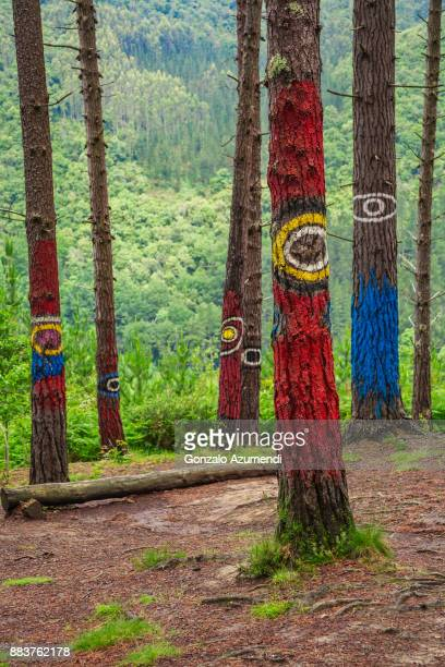 Painted forest of Oma in Basque Country in Spain