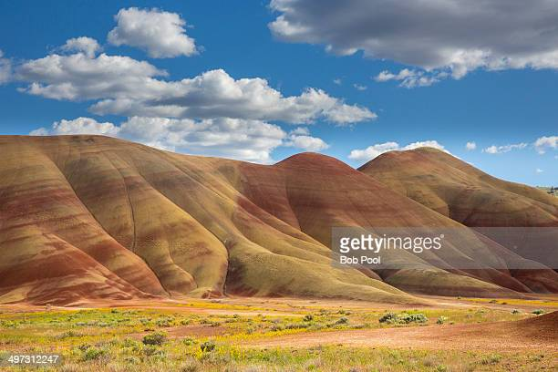 painted hill, john day fossil beds - john day fossil beds national park stock pictures, royalty-free photos & images