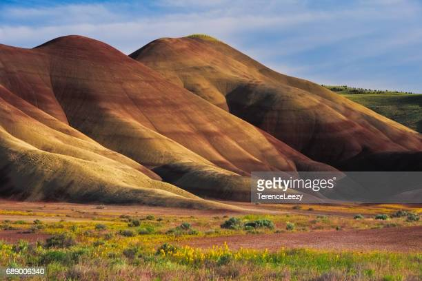 painted hills, john day fossil beds national monument, oregon, usa - painted hills stock pictures, royalty-free photos & images