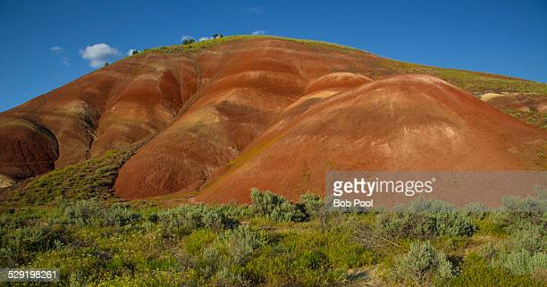 painted hills, john day fossil beds, oregon - john day fossil beds national park stock pictures, royalty-free photos & images