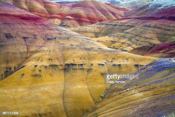 painted hills, oregon - fossil site stock pictures, royalty-free photos & images