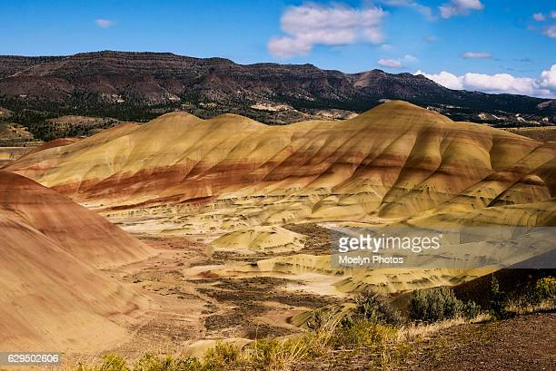 painted hills section-john day national monument-mitchell or - john day fossil beds national park stock pictures, royalty-free photos & images