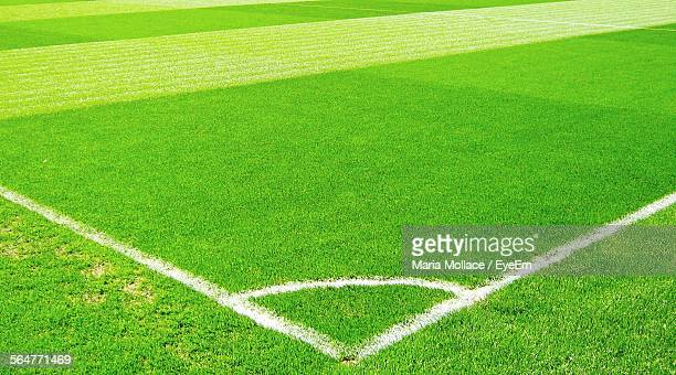 painted lines on soccer field - football bulge stock photos and pictures