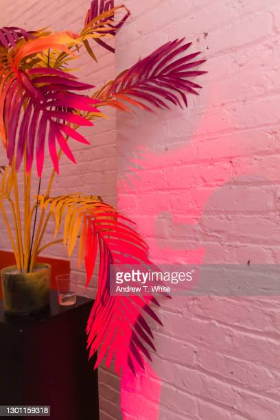 painted palm leaves with silhouette shadow and red lighting - installation art stock pictures, royalty-free photos & images