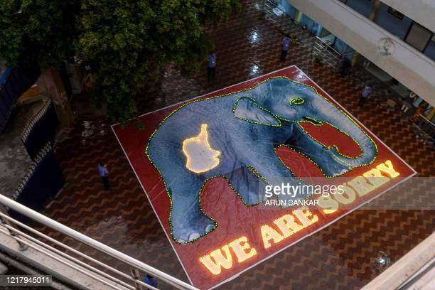 A painted poster of an elephant and its calf in the belly is seen lit up with candles by school staff to pay homage after the recent killing of a...