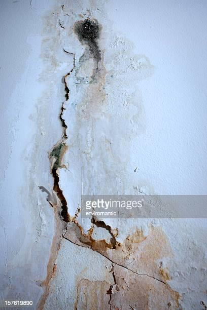 Bemalte Wand Hintergrund, die in feuchten.