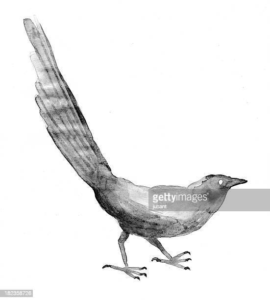 Painted watercolor bird