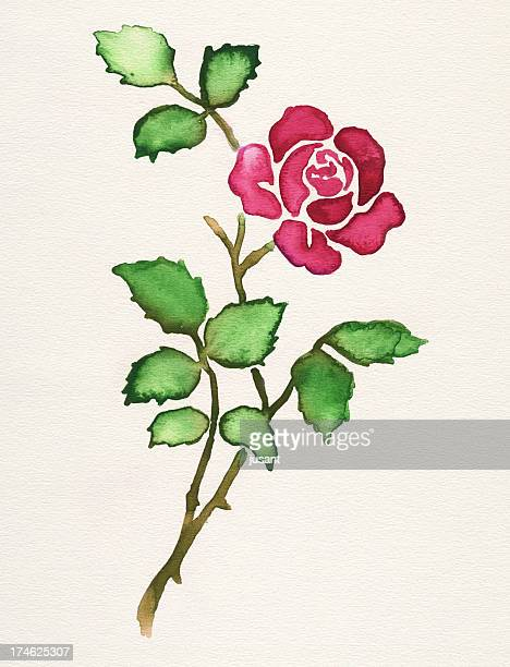 Painted watercolor rose