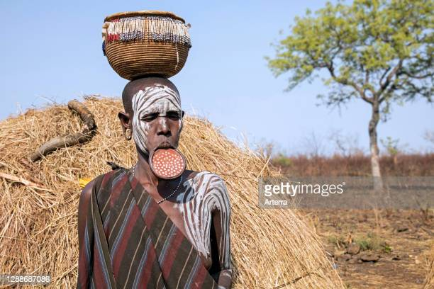 Painted woman of the Mursi tribe wearing lip plate and basket on her head in the Mago National Park, Jinka, Debub Omo Zone, Southern Ethiopia, Africa.