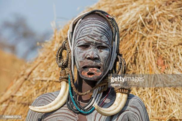 Painted woman of the Mursi tribe wearing lip plate and huge tusks earrings in the Mago National Park, Jinka, Debub Omo Zone, Southern Ethiopia,...